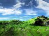 Free Abstract Wallpaper : Green Landscape