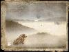 Free Abstract Wallpaper : Sepia Hedgehog