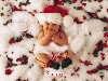 Free Artistic Wallpaper : Anne Geddes - Christmas
