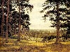 Free Artistic Wallpaper : Benjamin Williams Leader - A Peep Through the Pines