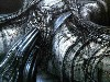 Free Artistic Wallpaper : Giger - Snatch