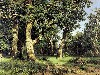Free Artistic Wallpaper : Shishkin - Oaks Grove