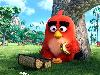 Free Cartoons Wallpaper : The Angry Birds Movie