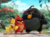 Free Cartoons Wallpaper : Angry Birds