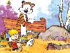 Free Cartoons Wallpaper : Calvin and Hobbes