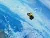 Free Cartoons Wallpaper : Despicable Me - Floating Minion