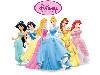 Free Cartoons Wallpaper : Disney Princess