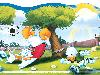 Free Cartoons Wallpaper : Donald Duck - Soccer