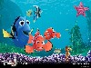 Free Cartoons Wallpaper : Finding Nemo