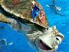 Free Cartoons Wallpaper : Finding Nemo