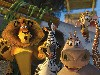 Free Cartoons Wallpaper : Madagascar 2