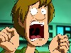 Free Cartoons Wallpaper : Shaggy - Scream