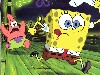 Free Cartoons Wallpaper : Spongebob Squarepants