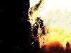 Free Comics Wallpaper : Ghost Rider