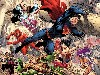 Free Comics Wallpaper : Justice League - New 52