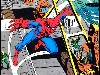 Free Comics Wallpaper : Spider-Man