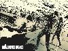 Free Comics Wallpaper : The Walking Dead