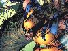 Free Comics Wallpaper : Wolverine