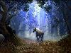 Free Fantasy Wallpaper : Andy Simmons - Unicorn