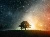 Free Fantasy Wallpaper : Cosmic Tree