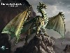 Free Fantasy Wallpaper : Draconomicon