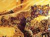 Free Fantasy Wallpaper : Josh Kirby - Discworld