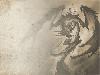 Free Fantasy Wallpaper : Lady Dragon