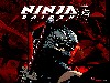 Free Games Wallpaper : Ninja Gaiden 2