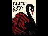 Free Movies Wallpaper : Black Swan