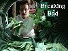 Free Movies Wallpaper : Breaking Bad