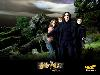 Free Movies Wallpaper : Harry Potter and the Prisoner of Azkaban