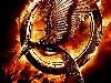 Free Movies Wallpaper : The Hunger Games - Catching Fire