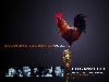 Free Movies Wallpaper : Idlewild