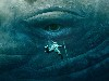 Free Movies Wallpaper : In The Heart of the Sea