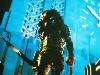 Free Movies Wallpaper : Predator 2