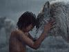 Free Movies Wallpaper : The Jungle Book