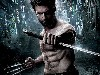 Free Movies Wallpaper : The Wolverine