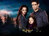 Free Movies Wallpaper : Twilight - Breaking Dawn Part 2