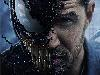 Free Movies Wallpaper : Venom