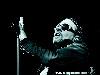 Free Music Wallpaper : Axl Rose