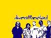 Free Music Wallpaper : The Dave Matthews Band