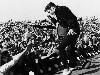 Free Music Wallpaper : Elvis Presley