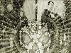 Free Music Wallpaper : Killswitch Engage