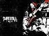 Free Music Wallpaper : Pantera - Dimebag