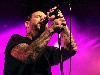 Free Music Wallpaper : Social Distortion - Mike Ness