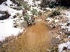 Free Nature Wallpaper : Arizona Trail