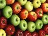 Free Nature Wallpaper : Apples