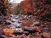 Free Nature Wallpaper : Autumn Brook