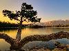 Free Nature Wallpaper : Lake