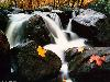 Free Nature Wallpaper : Beautiful River